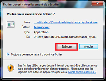 Teamviewer execution
